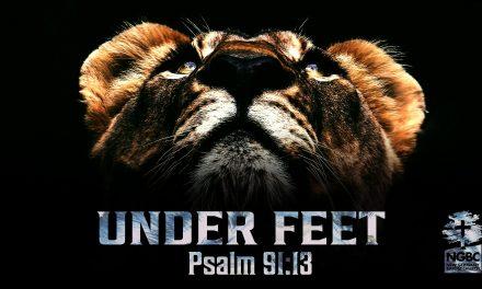 Under Feet